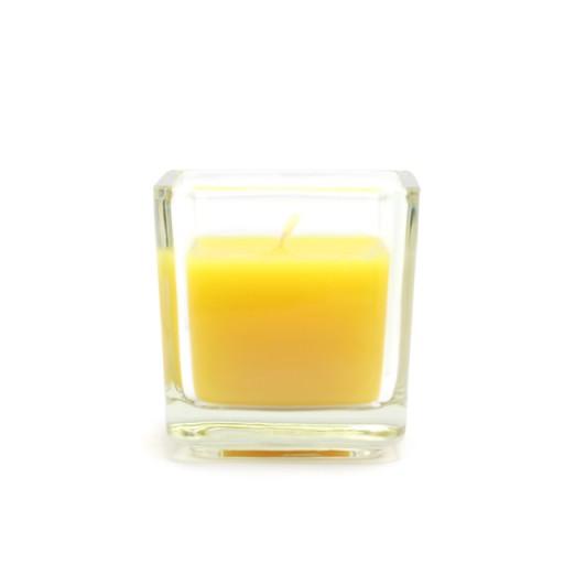 Citronella Square Glass Votive Candles (12pc/Box)