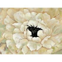 """48"""" x 36"""" White Flower Canvas"""