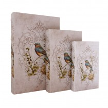 Rainbow Finch Book Box (Set of 3)