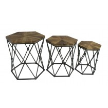 Set of 3 Hexagon Wood & Metal End Table