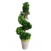 "23"" Boxwood Rotate Topiary"