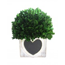"10"" Boxwood pot with Heart Wood Box"