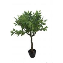 "37"" Heart Shpae Leaf Tree"