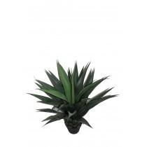 """40""""Gladiolus Potted Tree"""