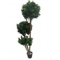 "71"" Globe Fourtune Tree"