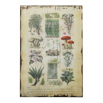 "15.75"" x 23.75"" Botanical Wall Plaque"