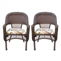 Resin wicker dining chair with florals cushions-set of 2