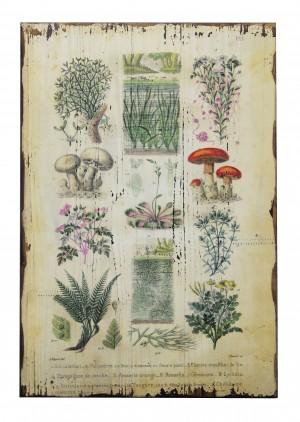 "15.75"" x 23.75"" Botanical Wall Plaque"